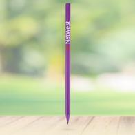 Chameleon Range – CD Case Pencil