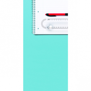 Plastic Transparent Ruler