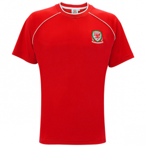 Wales Adults T-Shirt