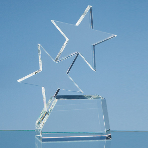 Optical Crystal Double Rising Star Award