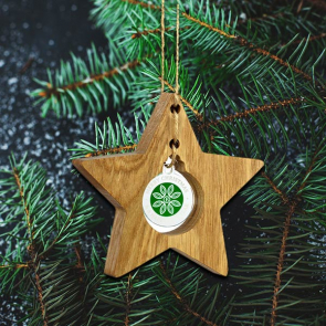 Oak Hanging Star With Recycled Acrylic Bauble