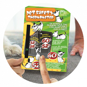 Pet Safety Thermometer