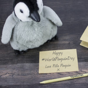 A History Of Pella Penguin On World Penguin Day 2018