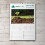 Pellacraft - Economy Wall Calendar