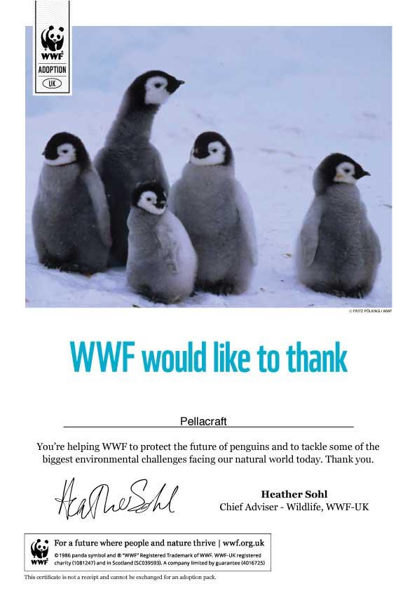 Pella Penguin WWF Certificate