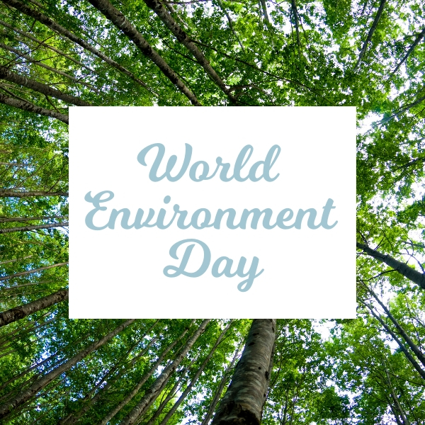 Be Inspired by World Environment Day